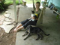 Alternate view of Rachel Teter with a cat in a hammock next to a dog,  El Plátano, Panama