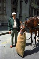 Alternate view of Herb Striner near a horse, Florence, Italy